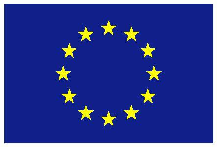 196-2 eu-flag